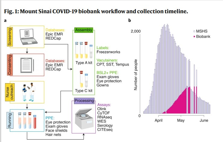 Unprecedented biobanking effort to combat COVID-19